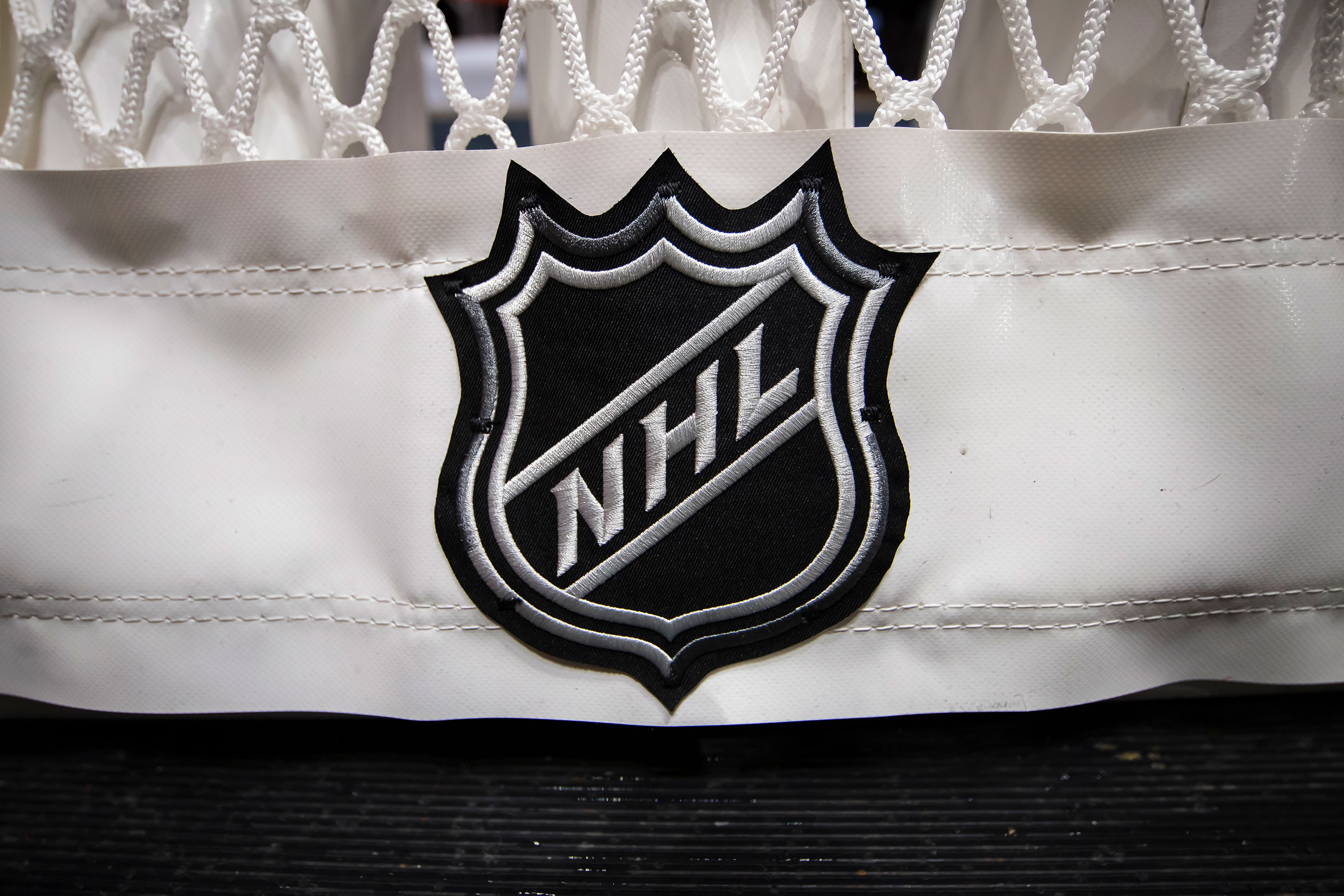 A detailed view of the NHL logo is seen on the back of the goal netting at Capital One Arena on October 16, 2019 in Washington, DC.