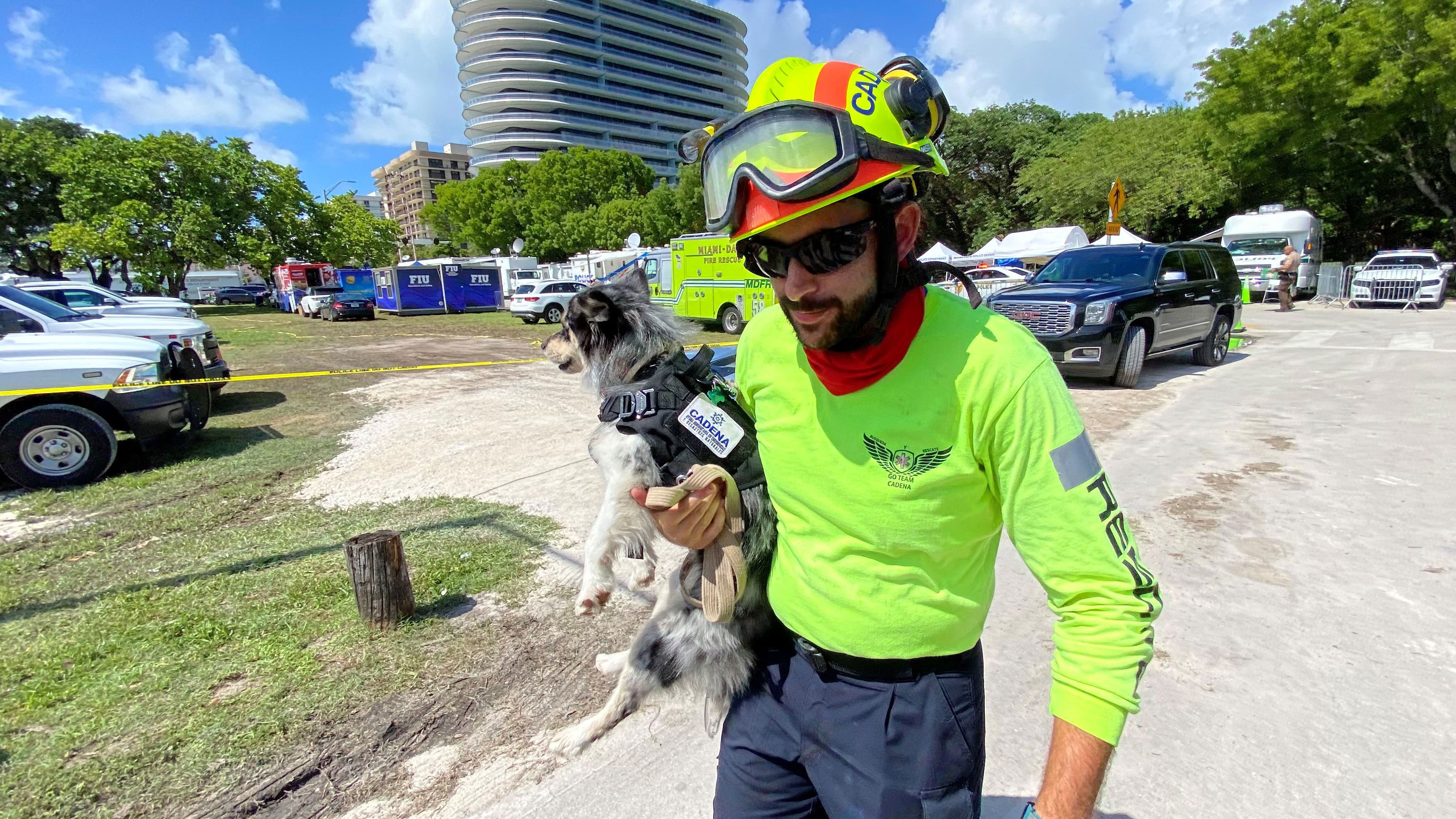 A search dog named Oreo, a 2-year-old female pomsky, owned by volunteer Moises Soffer, from Mexico is seen outside on Sunday, June 27, in Surfside, Florida.