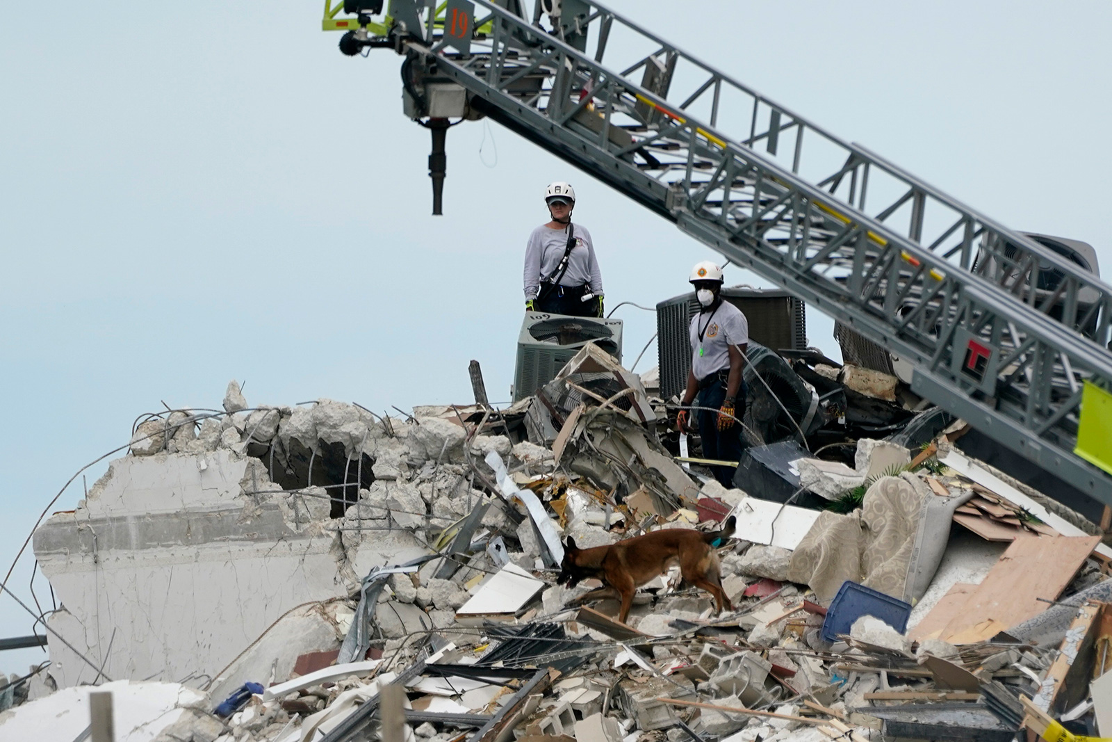 A dog walks with rescue workers among the rubble where a wing of a 12-story beachfront condo building collapsed on Thursday in Surfside.