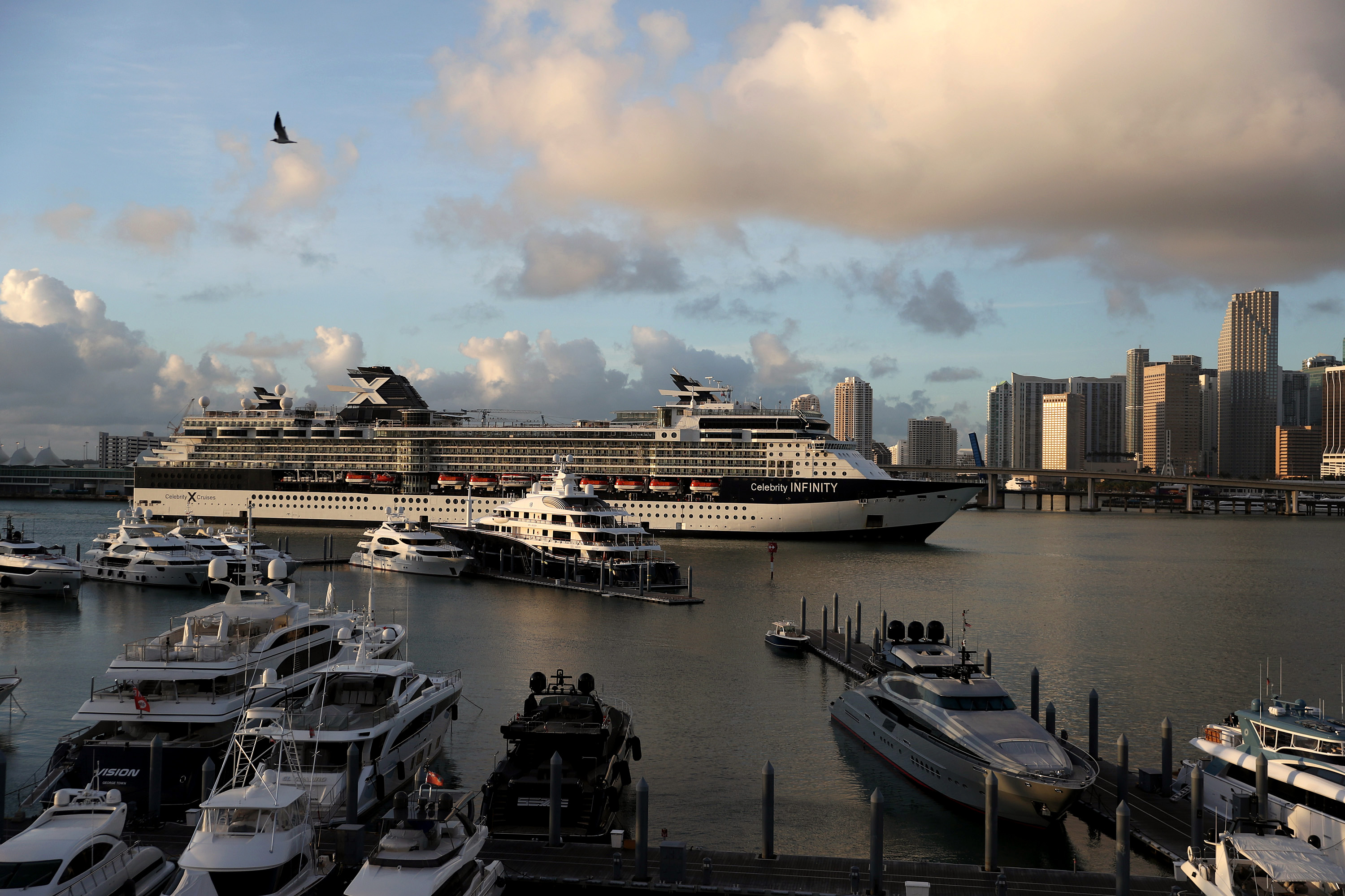 The Celebrity Infinity Cruise ship, a wholly owned subsidiary of Royal Caribbean Cruises, returns to PortMiami in Florida from a cruise in the Caribbean on March 14.