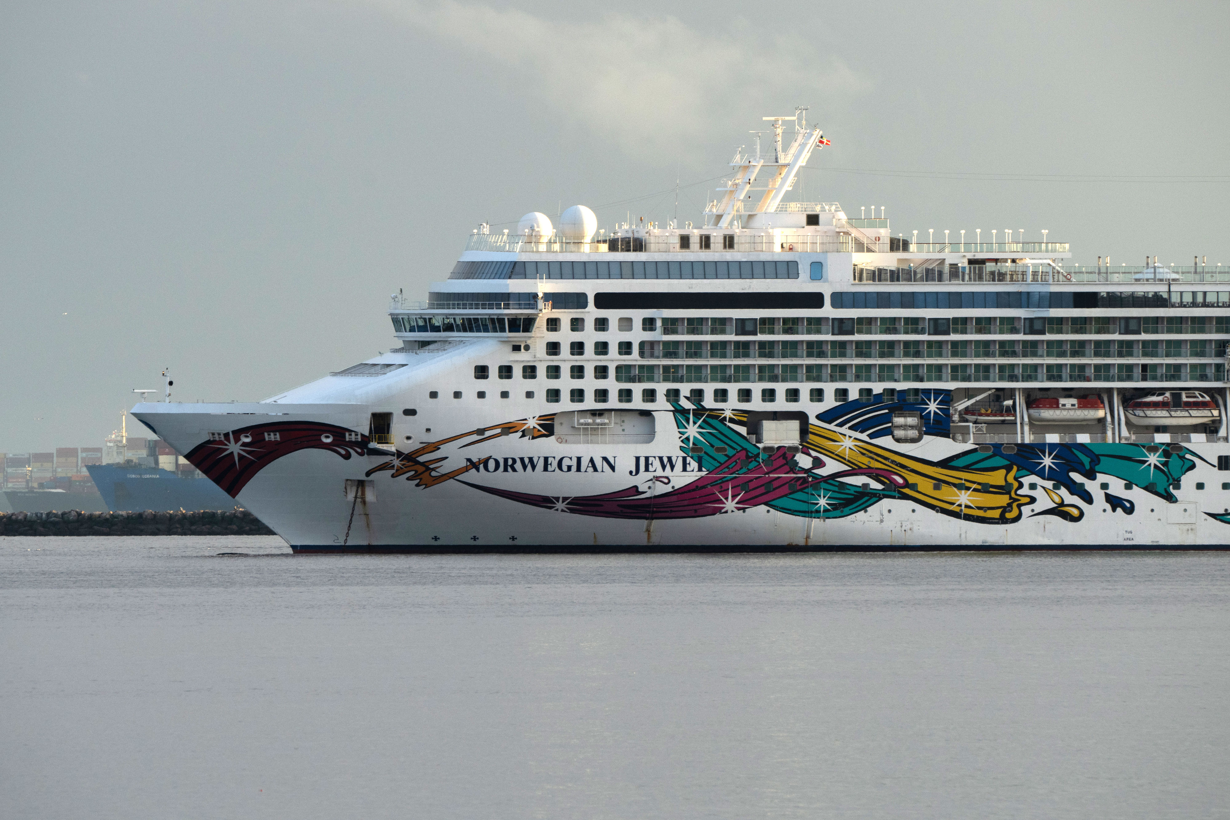 The Norwegian Jewel cruise ship, operated by Norwegian Cruise Line, is moored near the Port of Long Beach in California on January 29.
