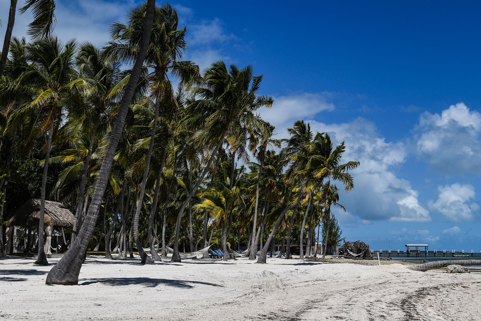 Empty lounge chairs are seen on the deserted beach of Florida Keys on March 22.