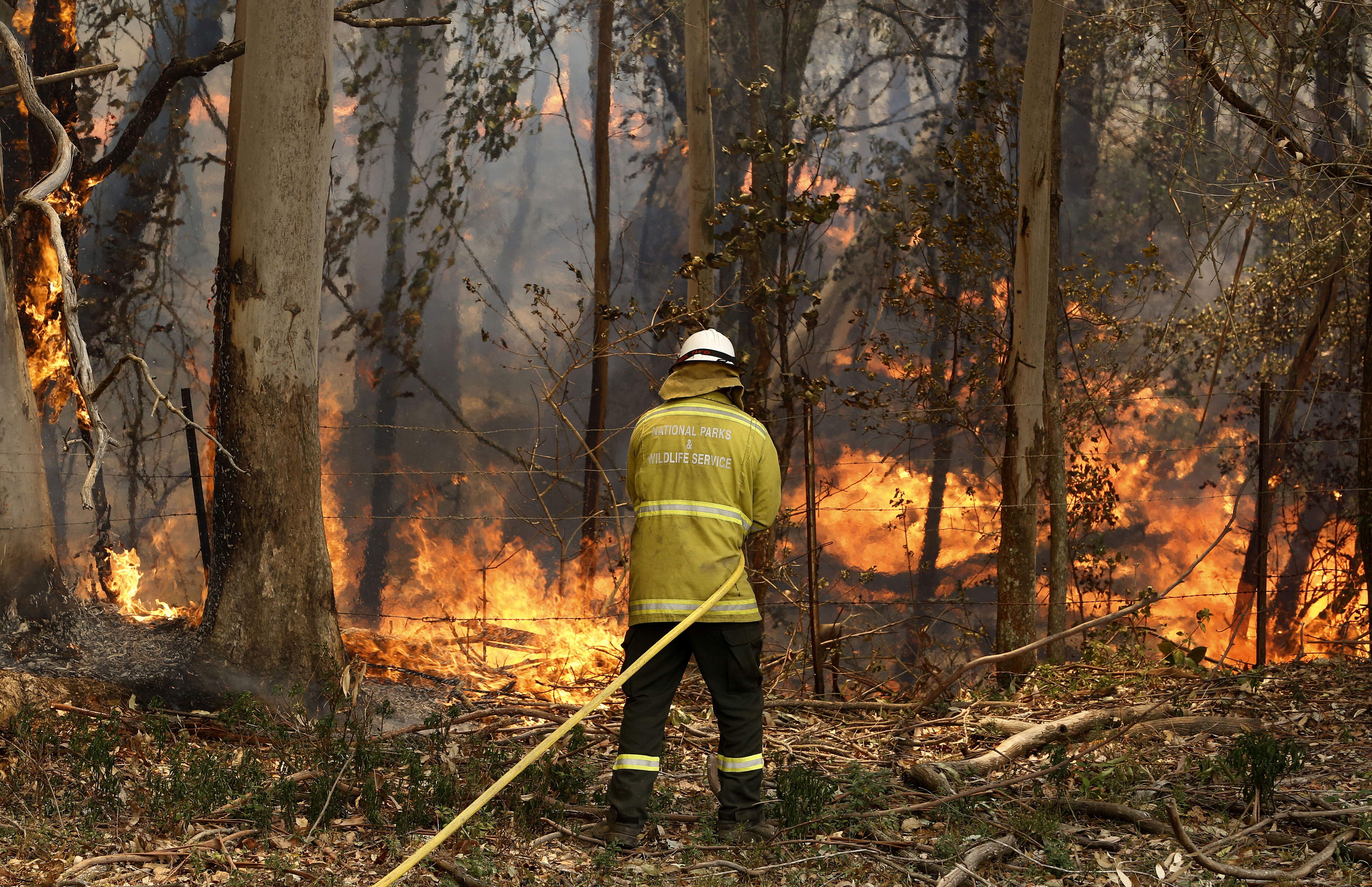 A National Parks and Wildlife crew member fights flames in regional New South Wales on Tuesday.