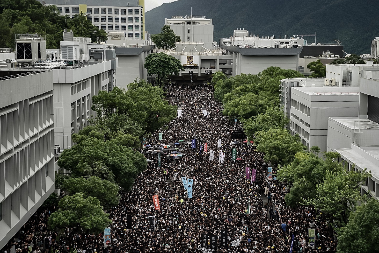 Students take part in a school boycott rally at the Chinese University of Hong Kong.