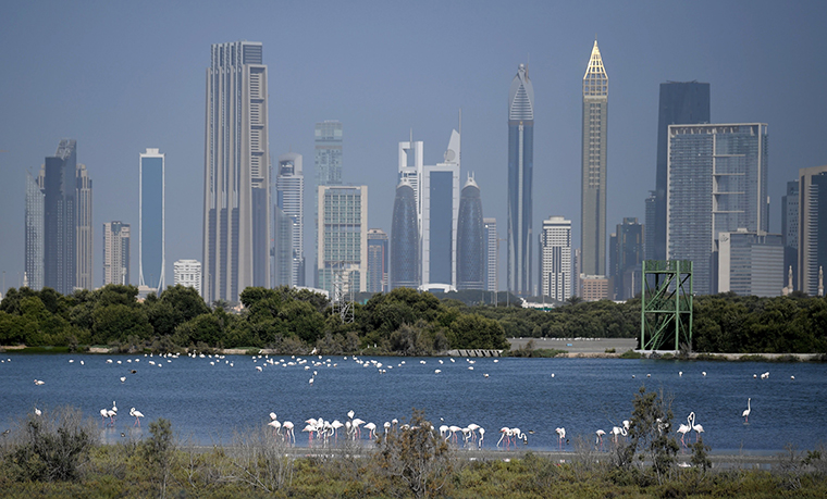 The skyline of Dubai seen on March 18.