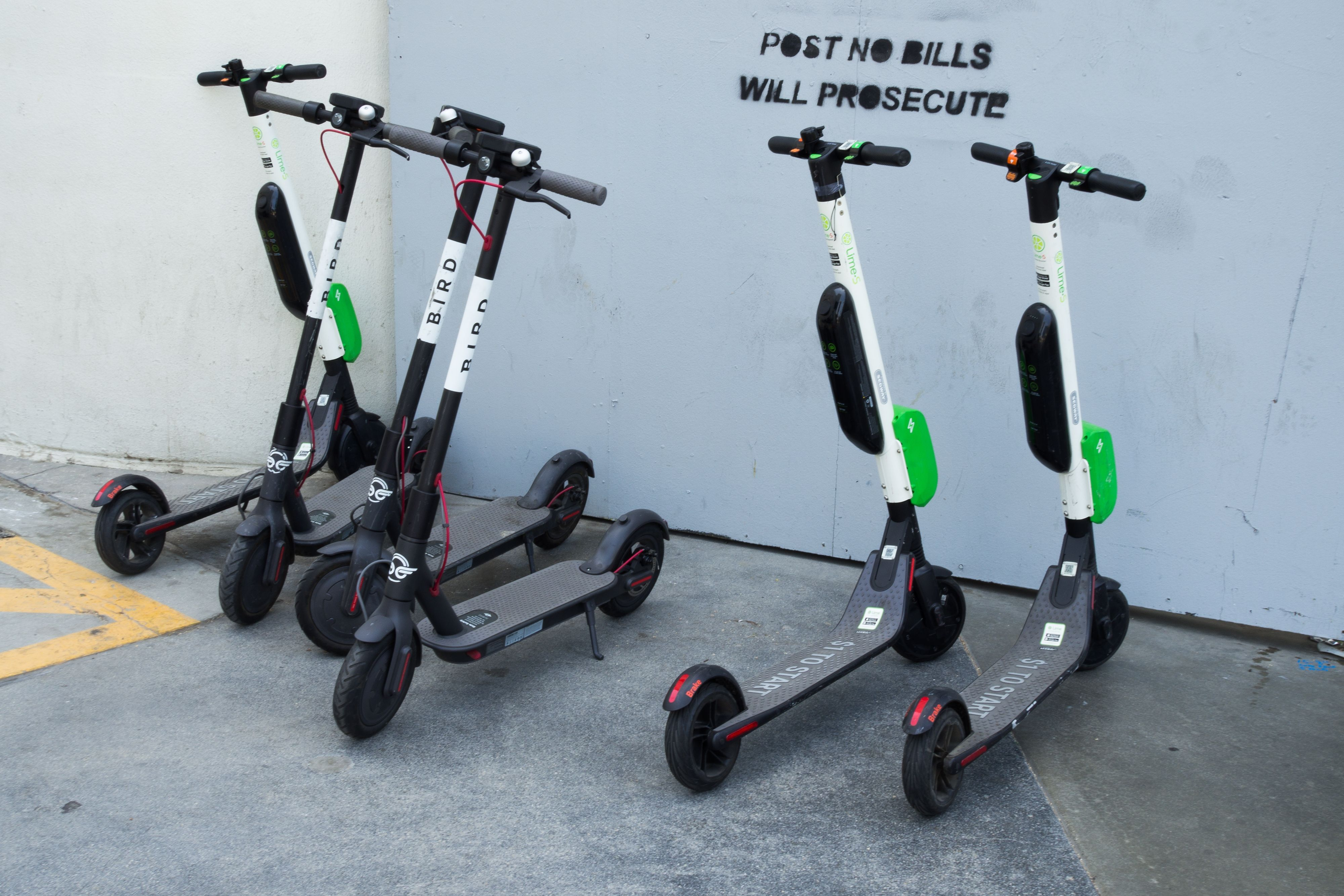 Shared electric scooters are seen in Santa Monica, California.
