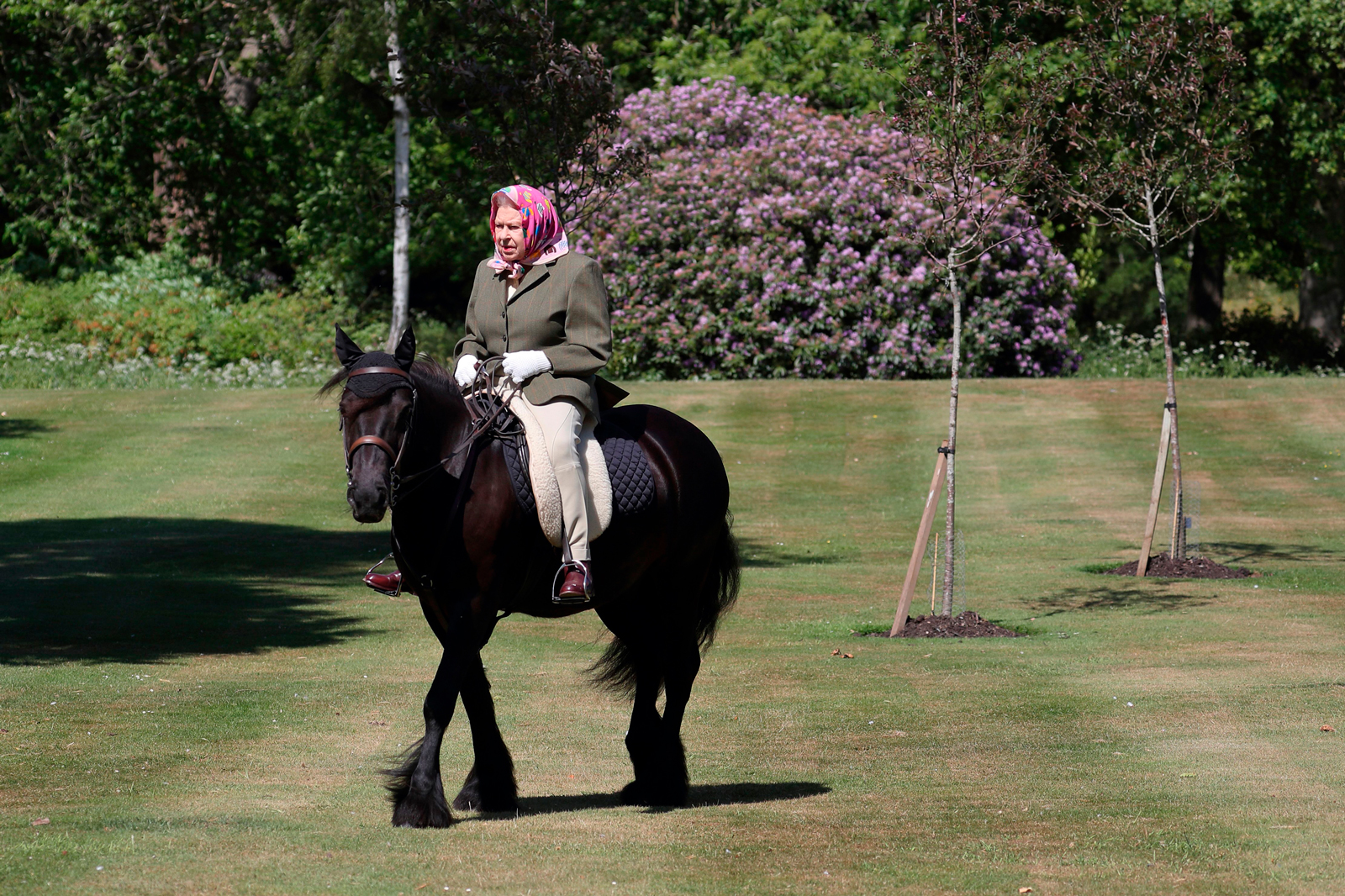 Britain's Queen Elizabeth II rides Balmoral Fern, a 14-year-old Fell Pony, in Windsor Home Park, west of London, over the weekend of May 30 and May 31.