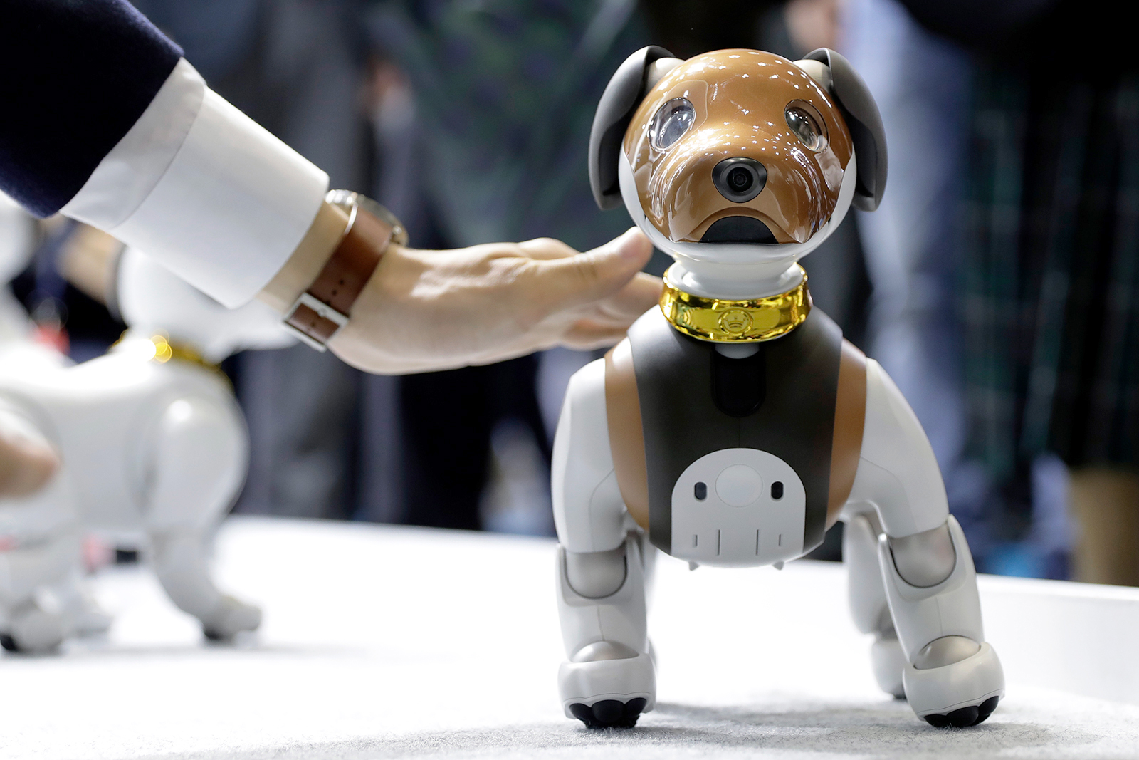 A robotic dog, 'Aibo', created by Sony Corp. pictured at the Combined Exhibition of Advanced Technologies (CEATEC) in Chiba, Japan, on October 16, 2019.