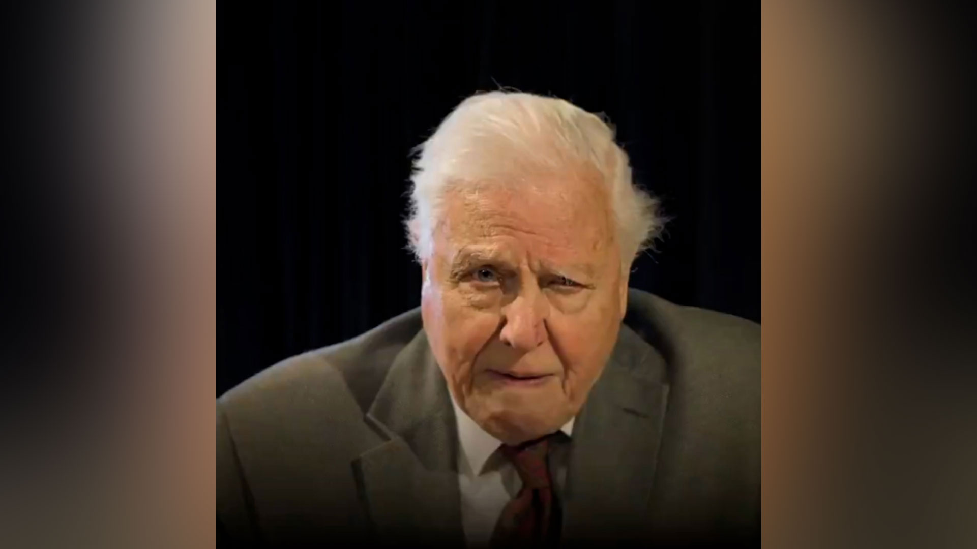 David Attenborough speaks via video to leaders at the G7 summit about tackling climate change.