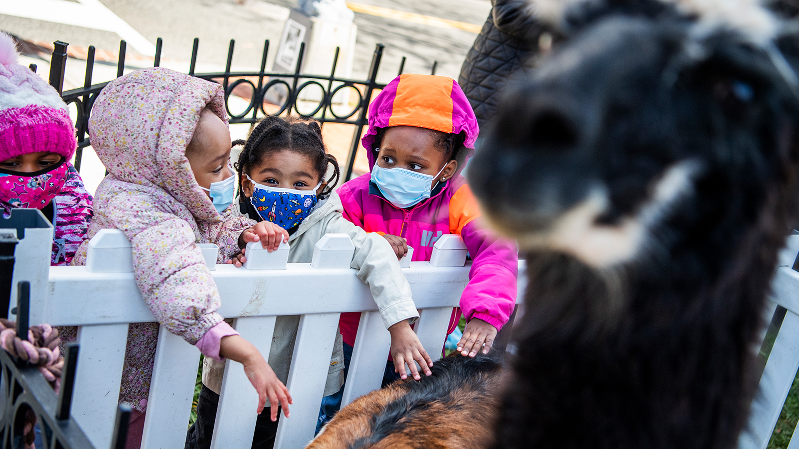 Students from Kingdom Kids Child Development Center pet animals during a birthday party at Springfield Baptist Church in the Shaw neighborhood of Washington, D.C., on April 2.