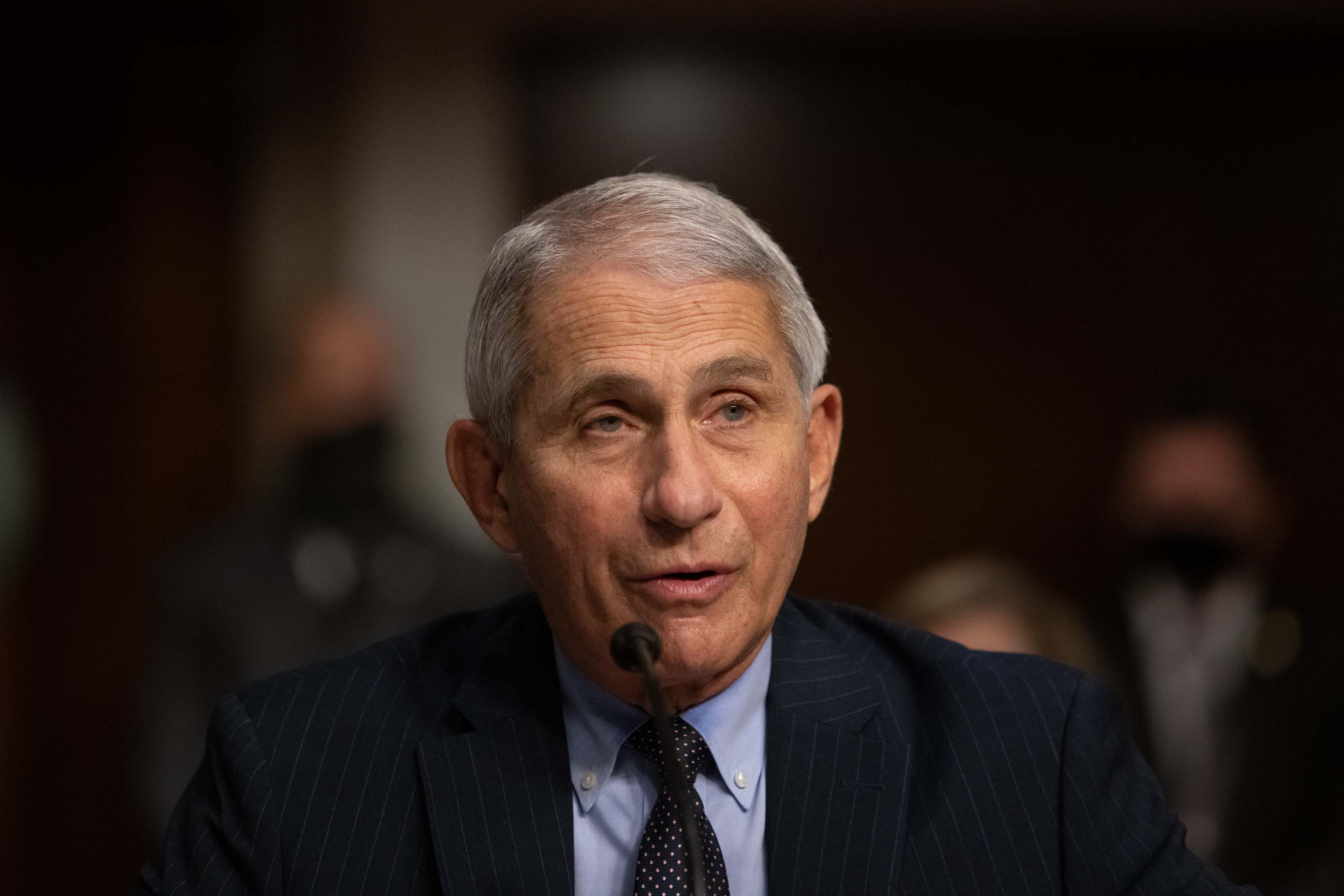 Dr. Anthony Fauci is pictured testifying during a US Senate Senate Health, Education, Labor, and Pensions Committee hearing in Washington, DC, on September 23.