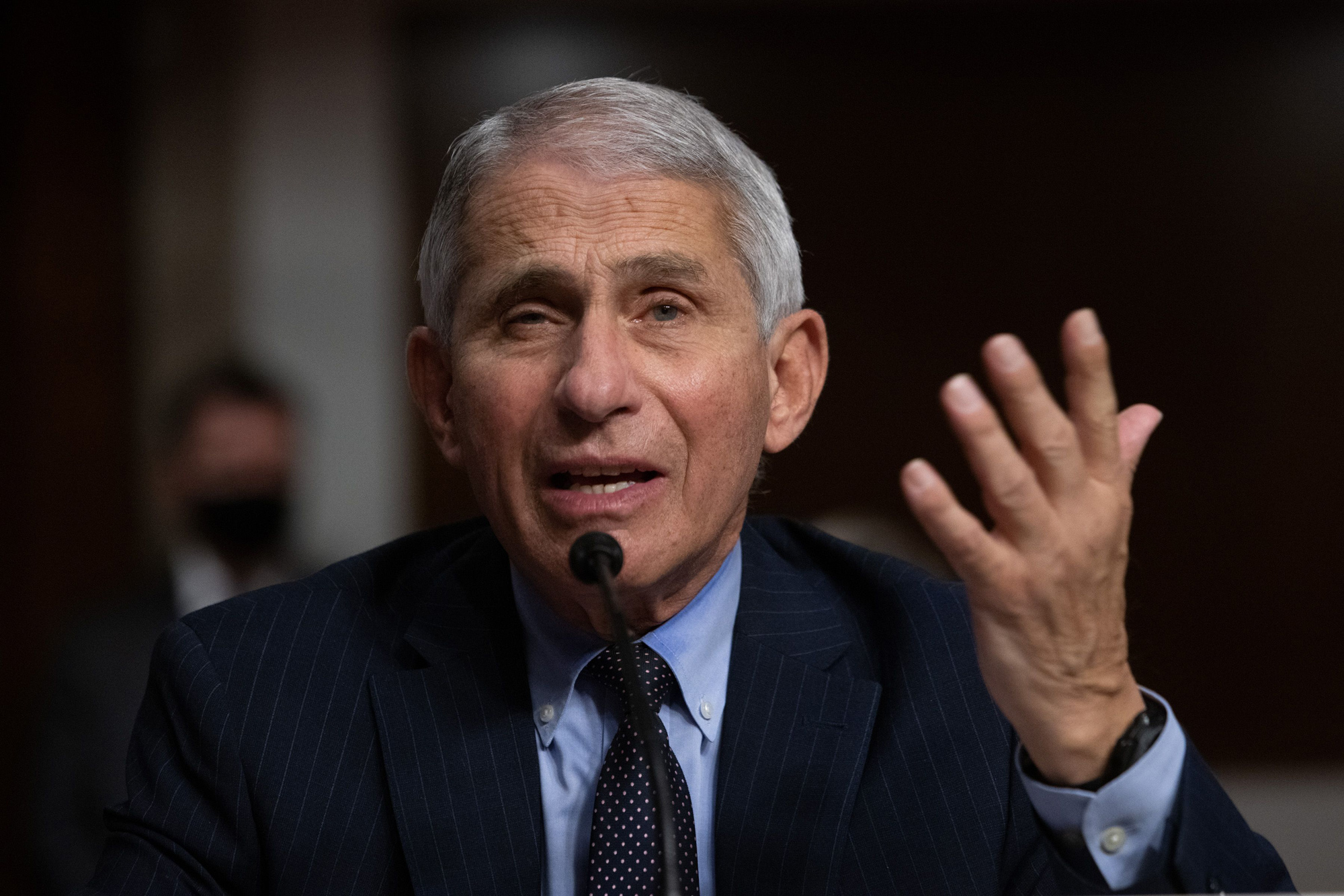 Director of the National Institute of Allergy and Infectious Diseases, Anthony Fauci, testifies during a US Senate Senate Health, Education, Labor, and Pensions Committee hearing in Washington, DC, on September 23.