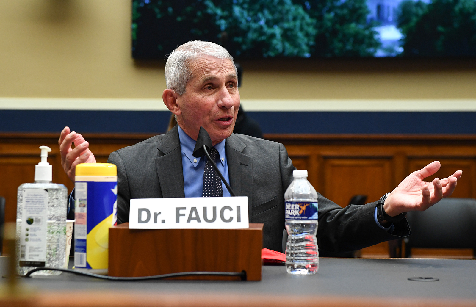 Dr. Anthony Fauci testifies during a House Energy and Commerce Committee hearing on the Trump administration's Response to the pandemic, on Capitol Hill in Washington, DC, on June 23.