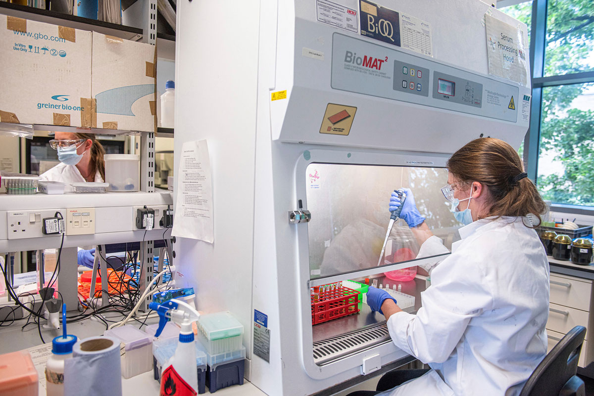 An Oxford Vaccine Group researcher in a laboratory works on the coronavirus vaccine developed by AstraZeneca and Oxford University.