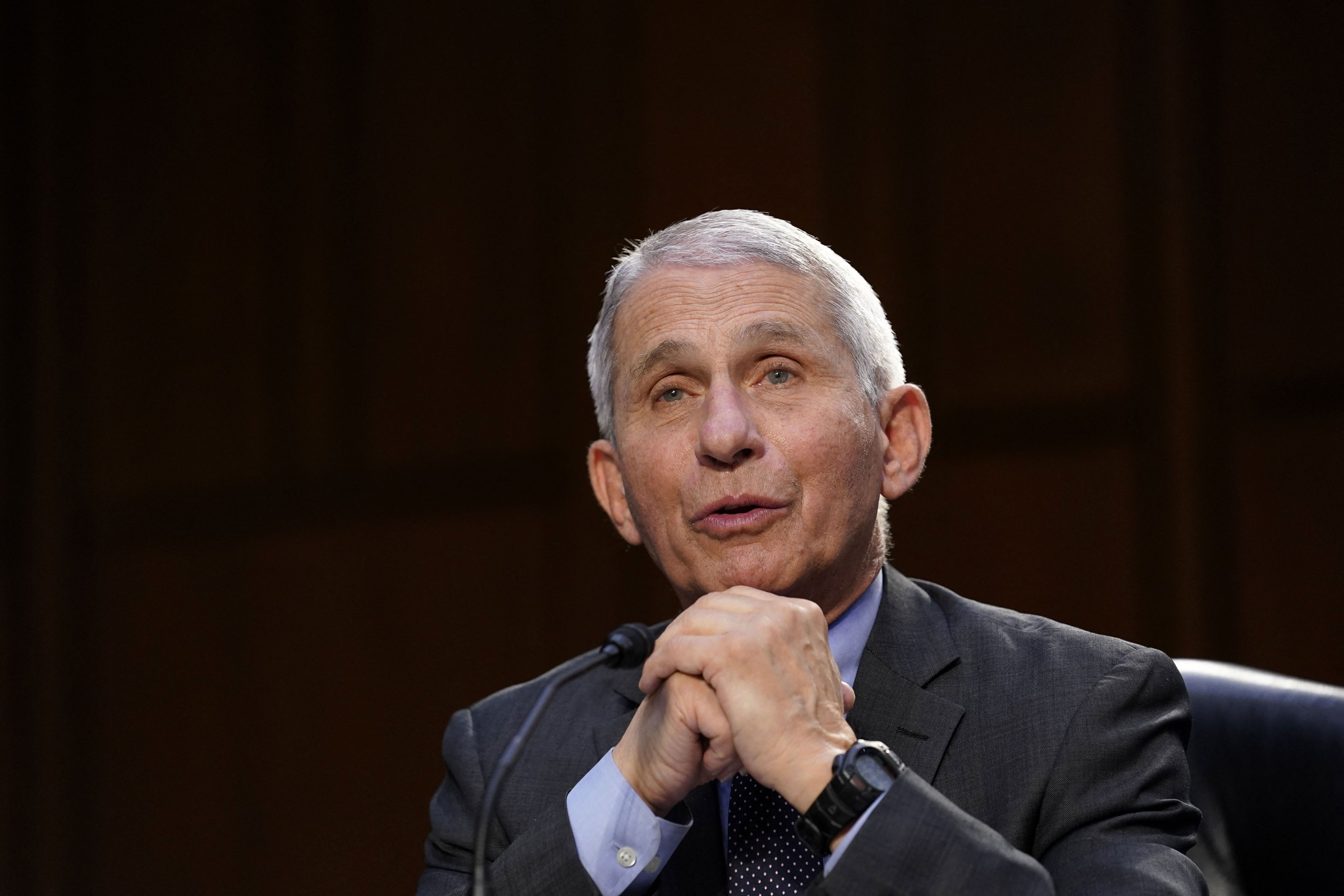 Dr. Anthony Fauci, director of the National Institute of Allergy and Infectious Diseases, testifies in Washington, DC, on March 18.