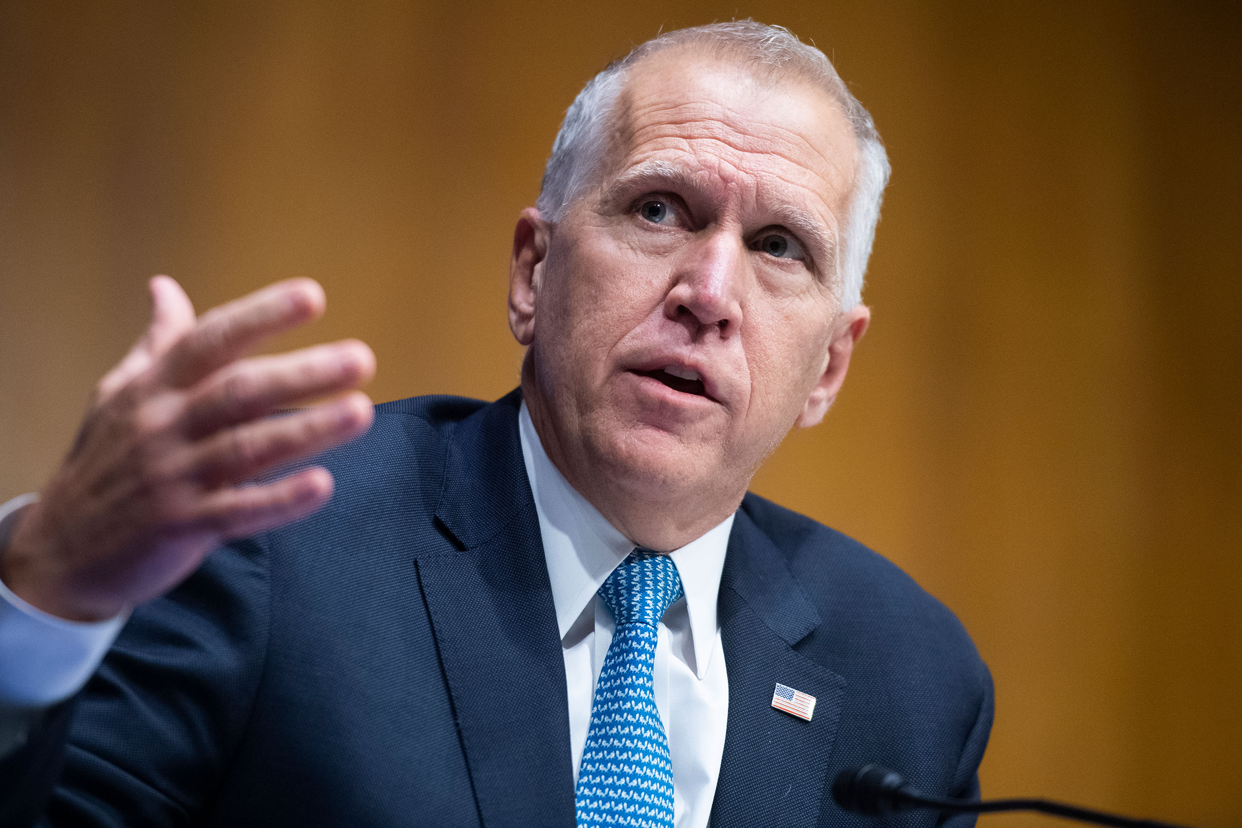 Sen. Thom Tillis asks a question during a Judiciary Committee hearing on June 16 in Washington, DC.