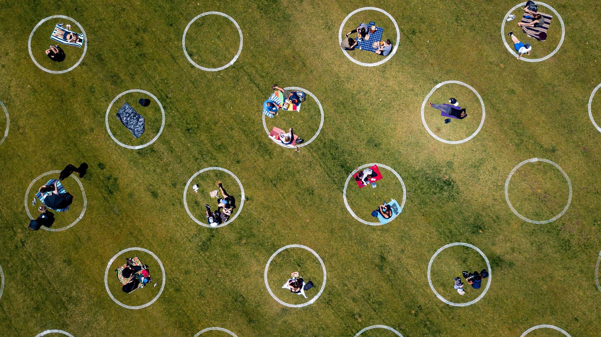 An aerial view shows painted circles in the grass to encourage people to social distance at Washington Square Park in San Francisco on May 22.