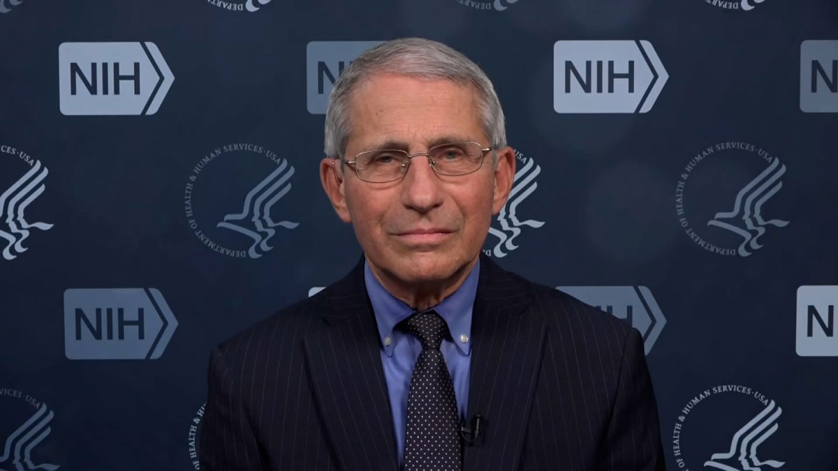 Dr. Anthony Fauci, director of the National Institute of Allergy and Infectious Diseases.