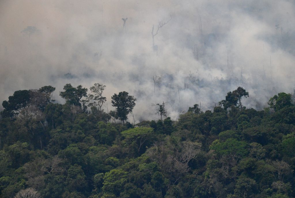 Aerial picture showing smoke from a two-kilometre-long stretch of fire billowing from the Amazon rainforest about 65 km from Porto Velho, in the state of Rondonia, in northern Brazil, on August 23.