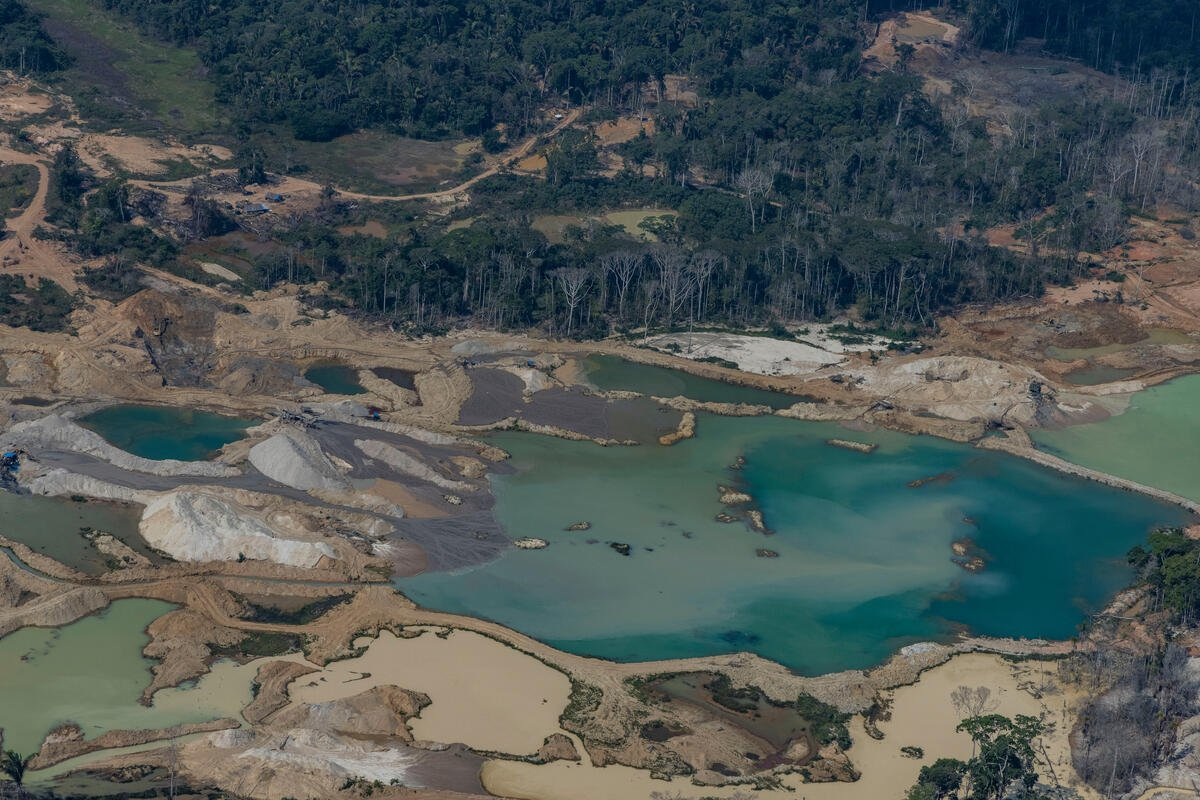 Aerial photo taken on September 15 of an area in the Amazon that Greenpeace said was being cleared for the expansion of cattle breeding, in Lábrea, Amazonas state.