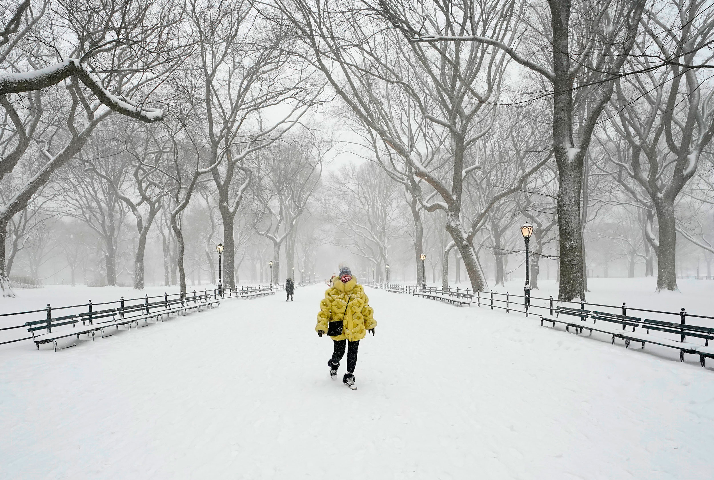 A woman walks in Central Park on Monday.