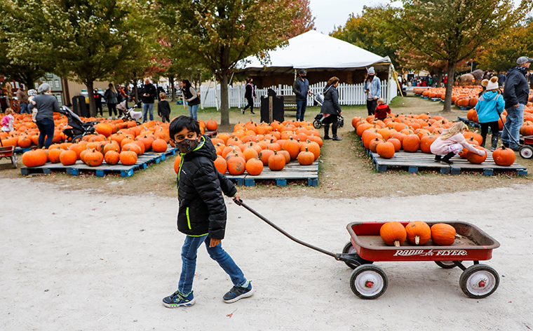A boy pulls a wagon with three pumpkins at a Pumpkinfest in Lincolnshire, Illinois, the United States, on Oct. 17, 2020.