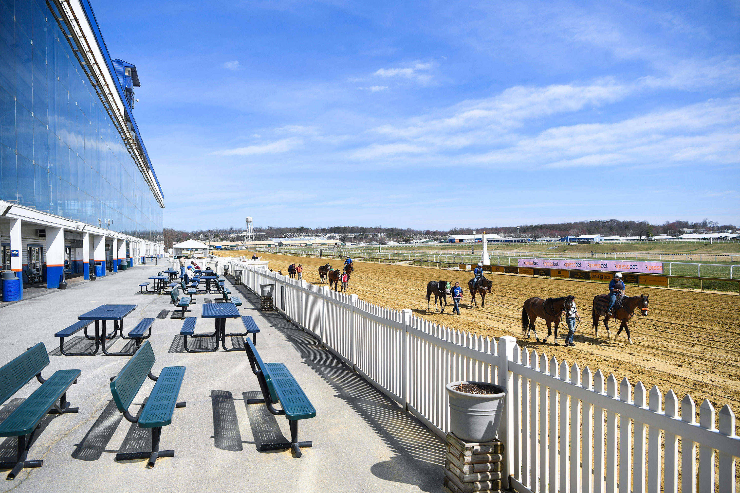 Horses are led across the track in front of an empty grandstand area before racing at Laurel Park Race Track, in Laurel, Maryland, on March 14.