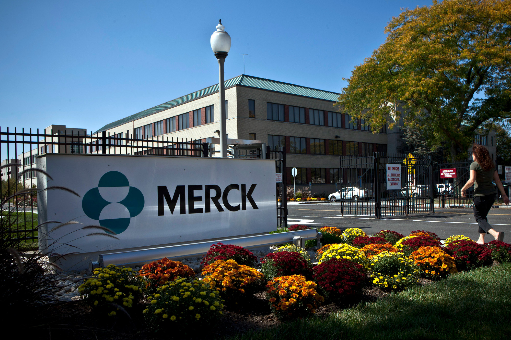 A Merck sign stands in front of the company's building on October 2, 2013, in Summit, New Jersey.