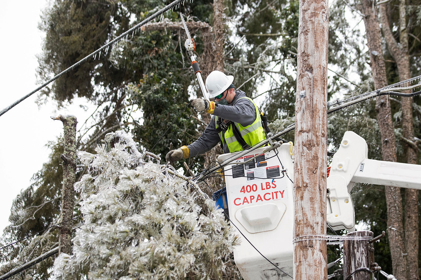 A worker cuts tree branches away from a power line in Huntington, West Virginia, on Wednesday, February 17.