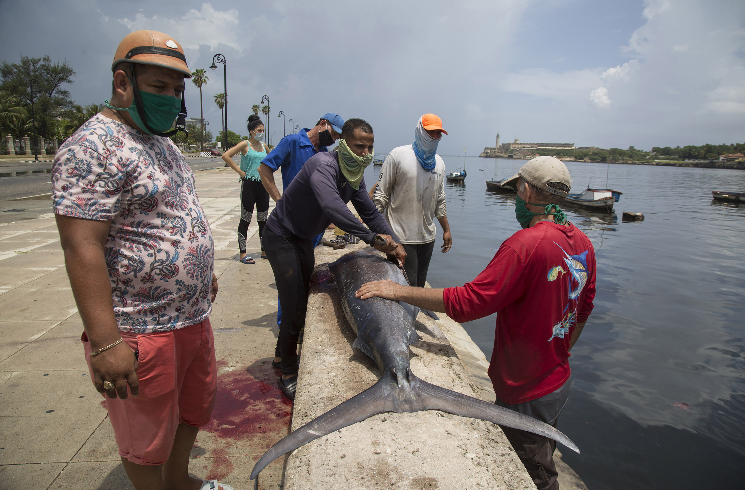 Fishermen wearing protective face masks clean a freshly caught fish while people line up to buy portions of the fish, in Havana, Cuba, on Saturday, June 27.