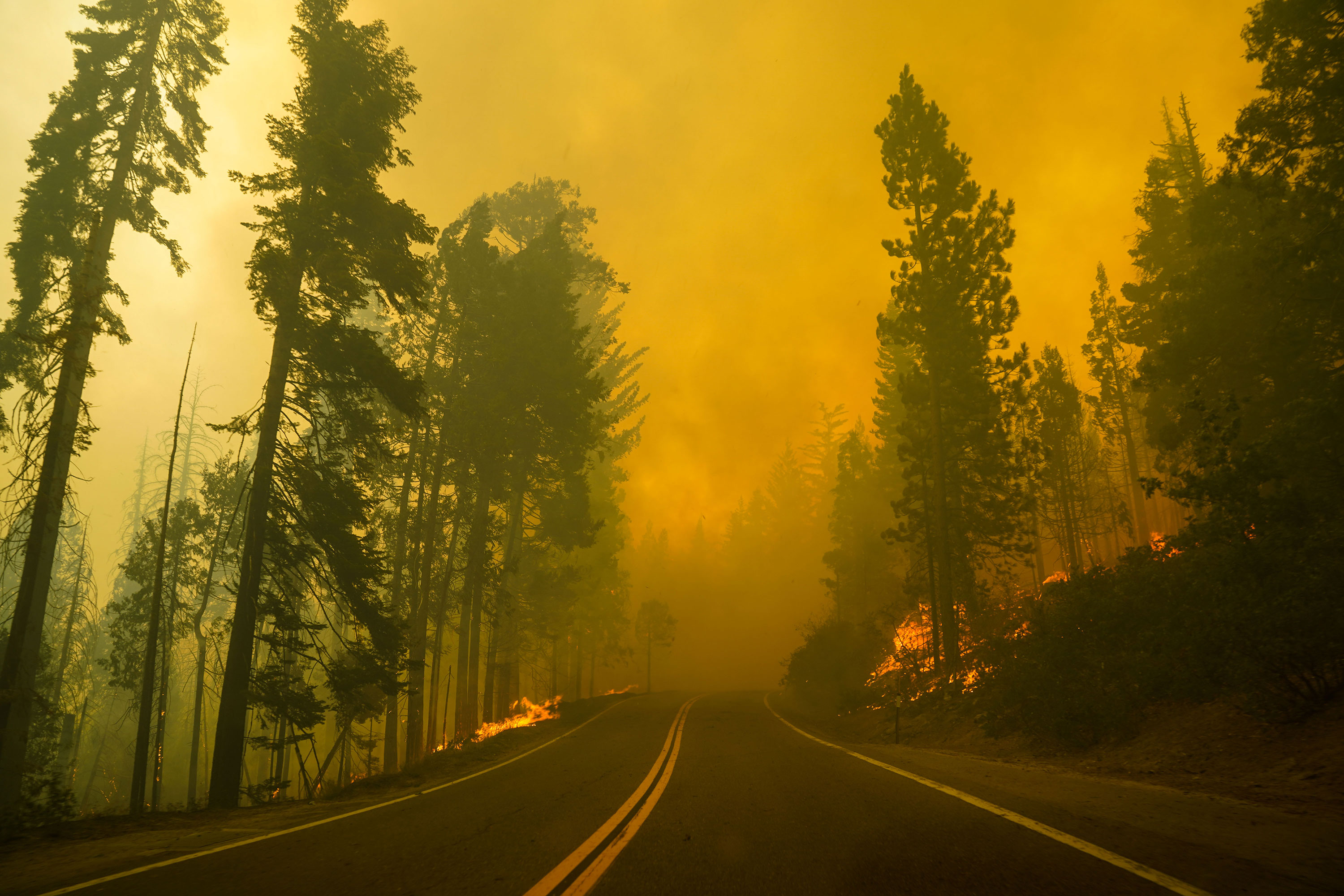 Flames from the Creek Fire are seen along a road just outside of Shaver Lake, California, in the Sierra National Forest on September 7.