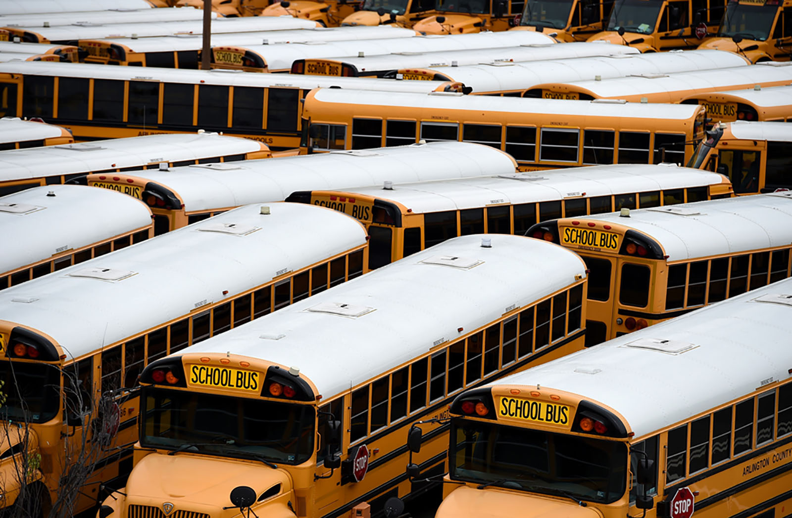 About 100 school buses are parked at the Arlington County Bus Depot, in response to the coronavirus outbreak on March 31, 2020 in Arlington, Virginia.
