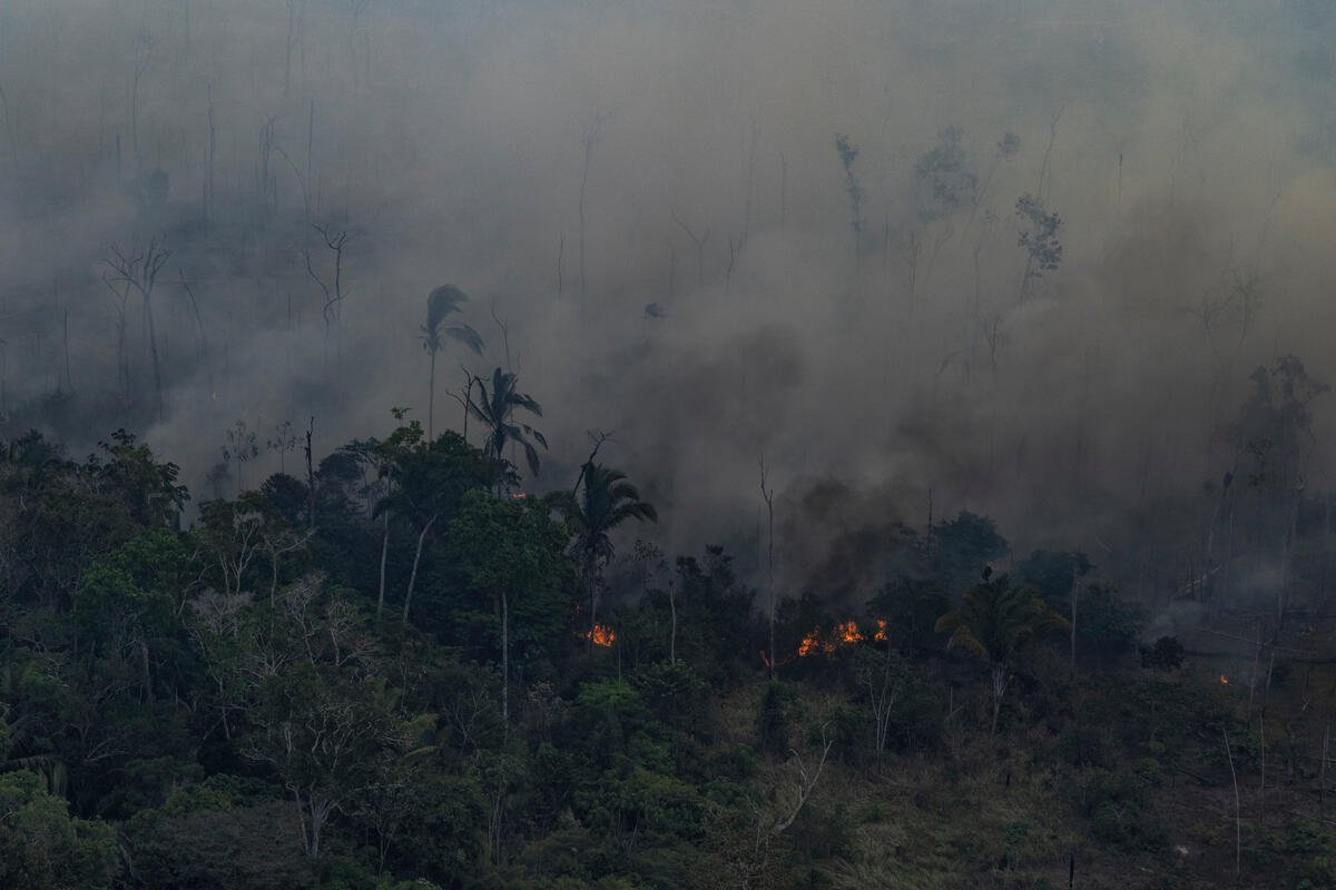 An aerial photo published by the NGOs Amazon Watch, Greenpeace Brazil and the Brazilian Climate Observatory of an expedition to the Amazon states.