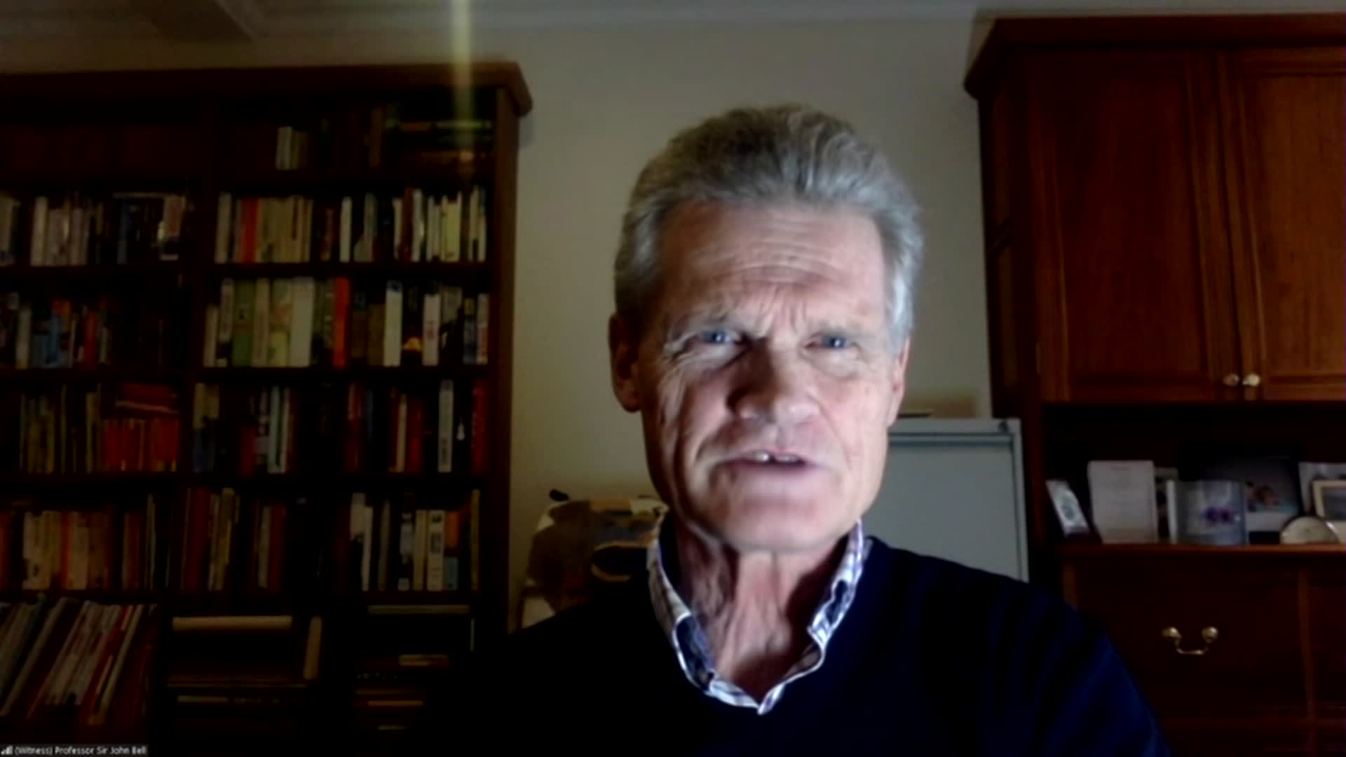 Regius Professor of Medicine at Oxford University John Bell speaks during a parliamentary committee hearing on November 10.