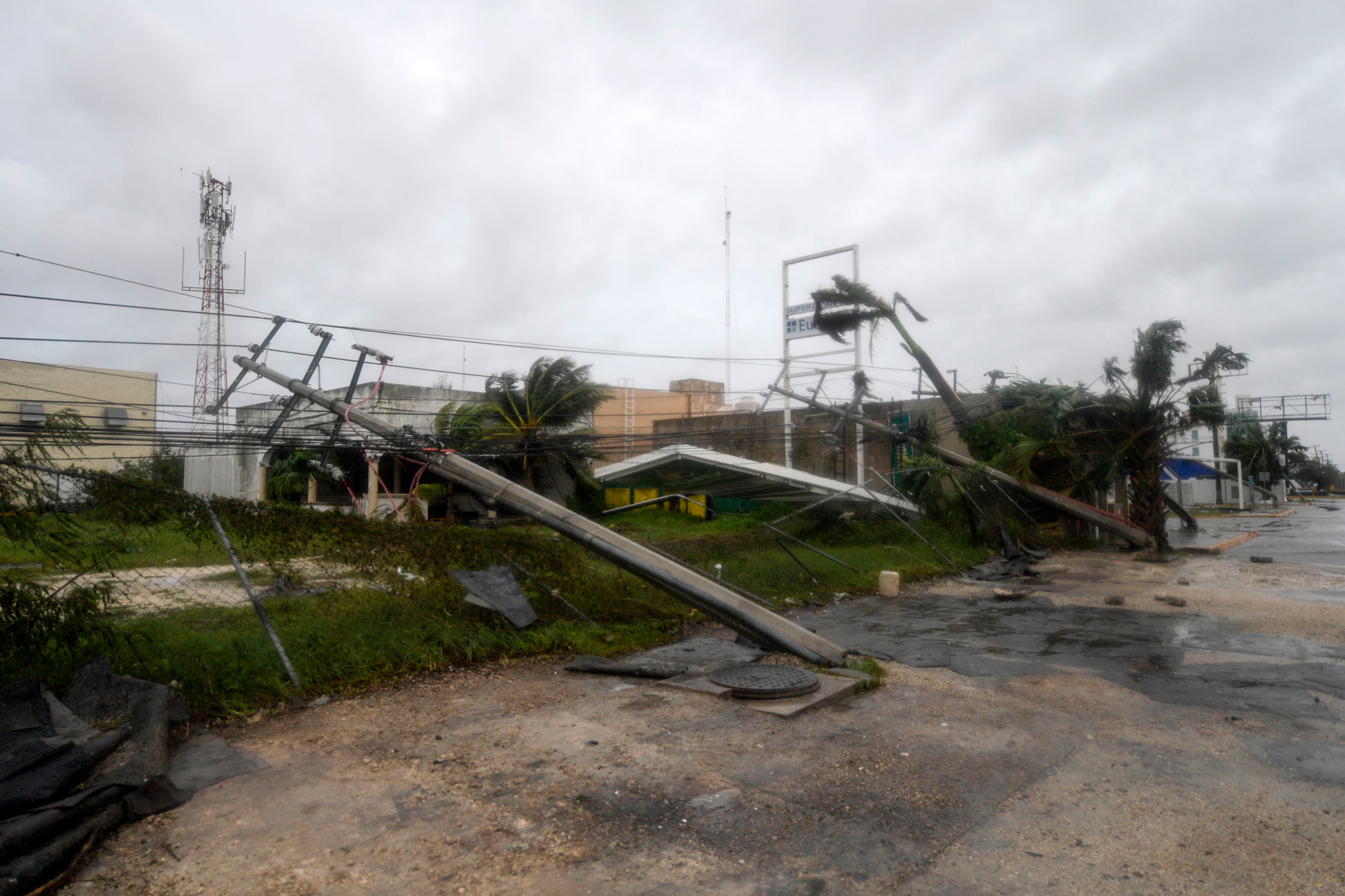 Fallen power lines and trees are seen after the passage of Hurricane Delta in Cancun, Quintana Roo, Mexico, on October 7.