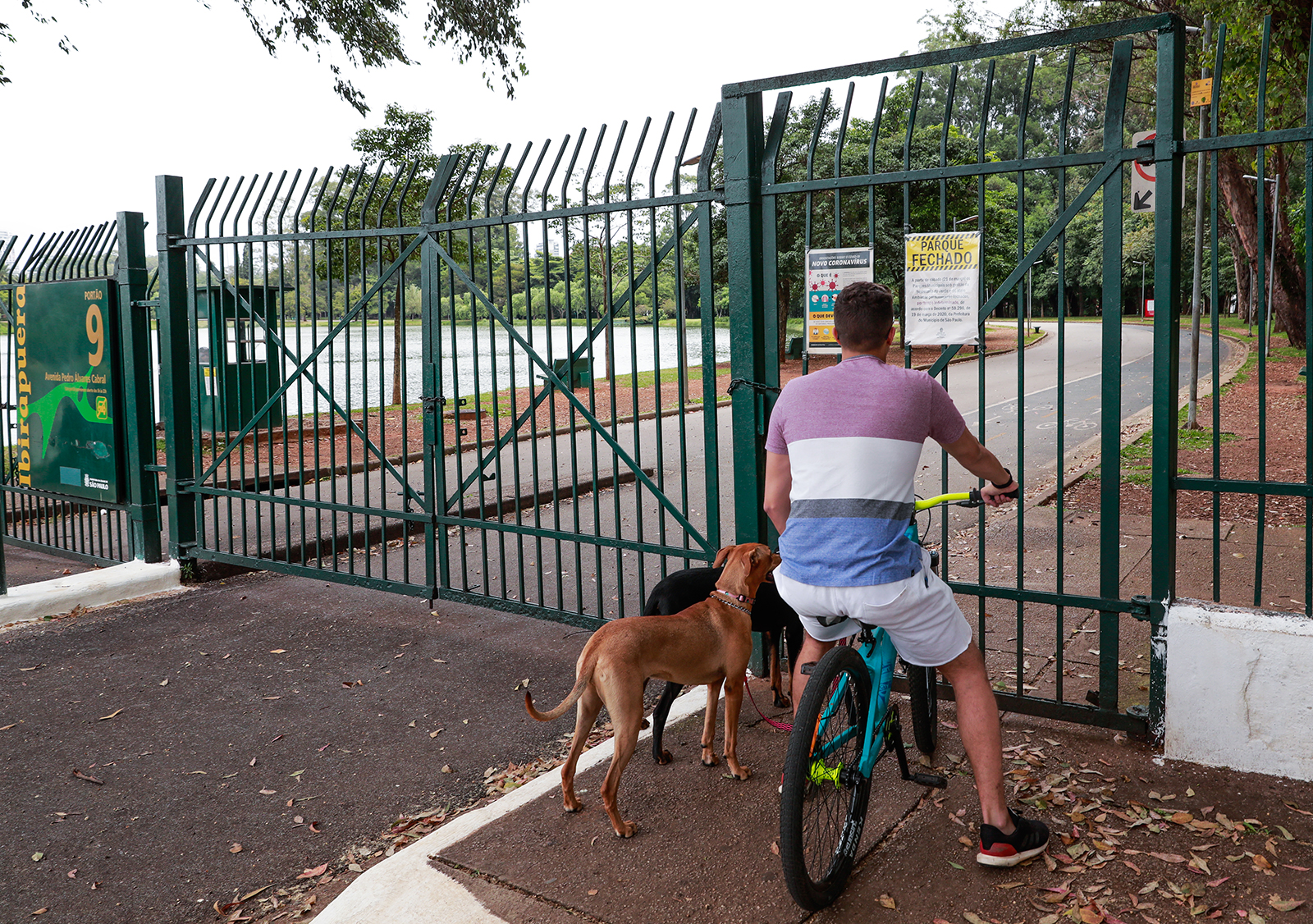 """A man and his dogs seen in front of a sign that reads """"Park Closed' at the gates of Ibirapuera Park in Sao Paulo, Brazil on March 21."""