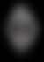 Vacheron Constantin Les Cabinotiers Sky Chart Minute Repeater Tourbillon