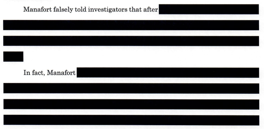 A portion of the partially redacted filing.