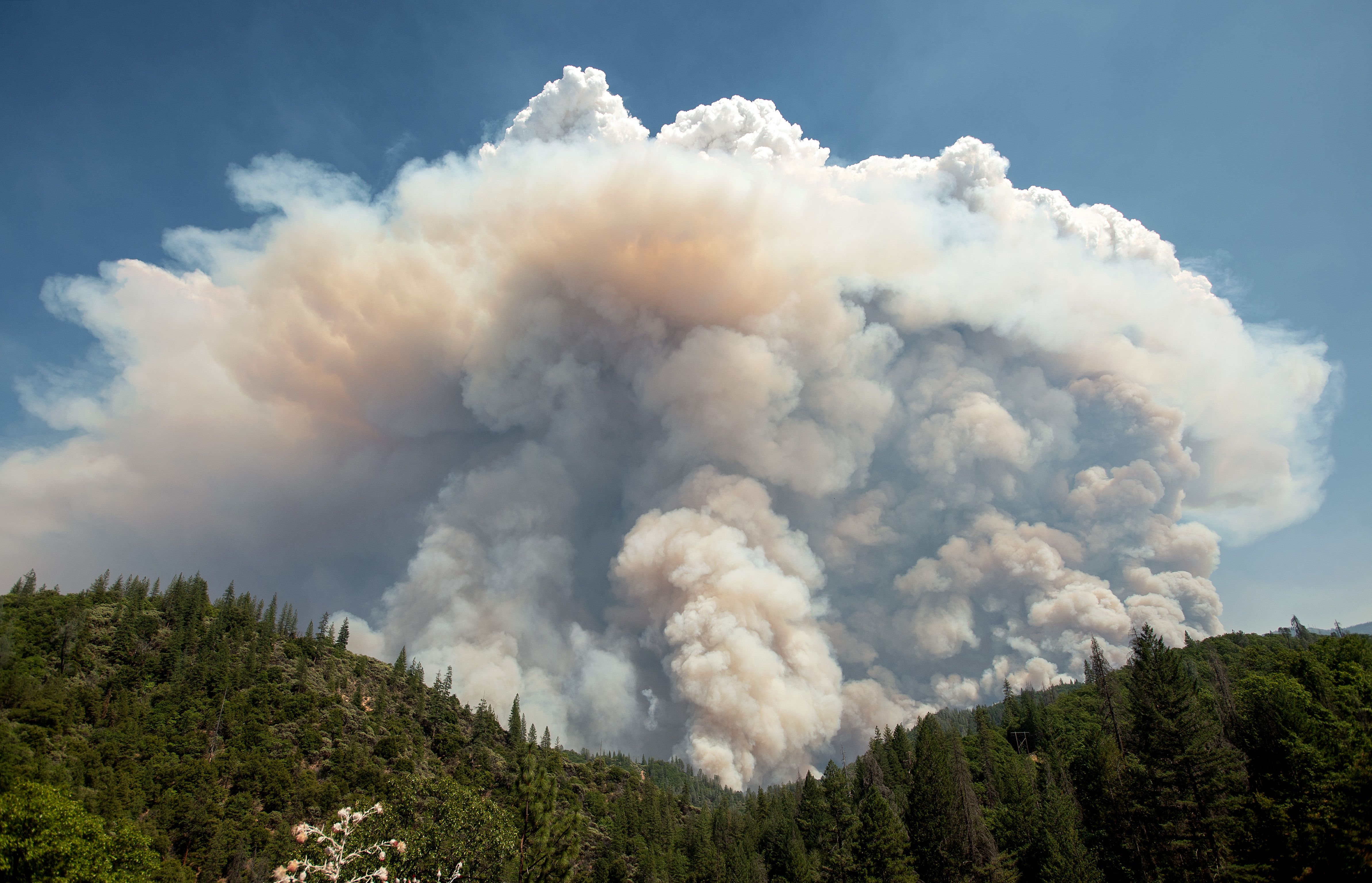A large pyrocumulus cloud explodes outward during the Carr Fire near Redding, California, on July 27.