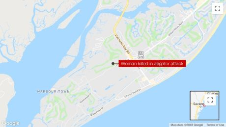 Hilton Head Island South Carolina Map.Alligator Attack On Hilton Head Island South Carolina Leaves Woman