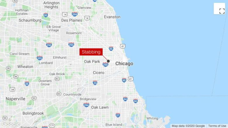 A 5-year-old girl was killed in a stabbing incident in Chicago, police say