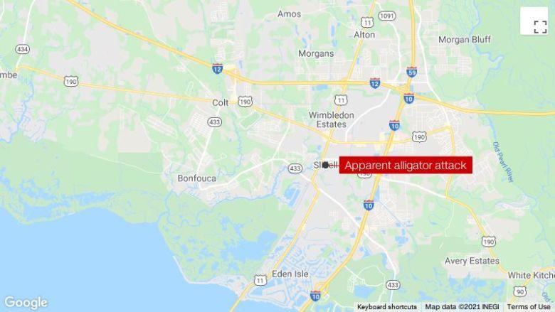 ルイジアナ州の男性は、ワニが洪水の中を歩いているときに彼を攻撃した後、死亡したと推定されています