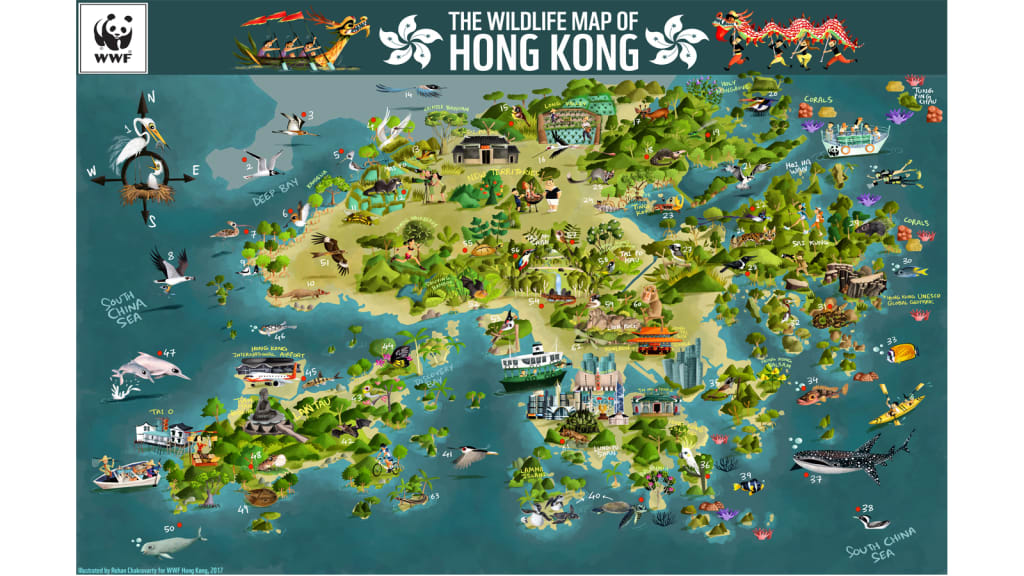 Colorful WWF map showcases Hong Kongs biodiversity CNN Travel