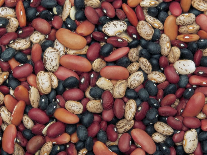 superfoods variety beans