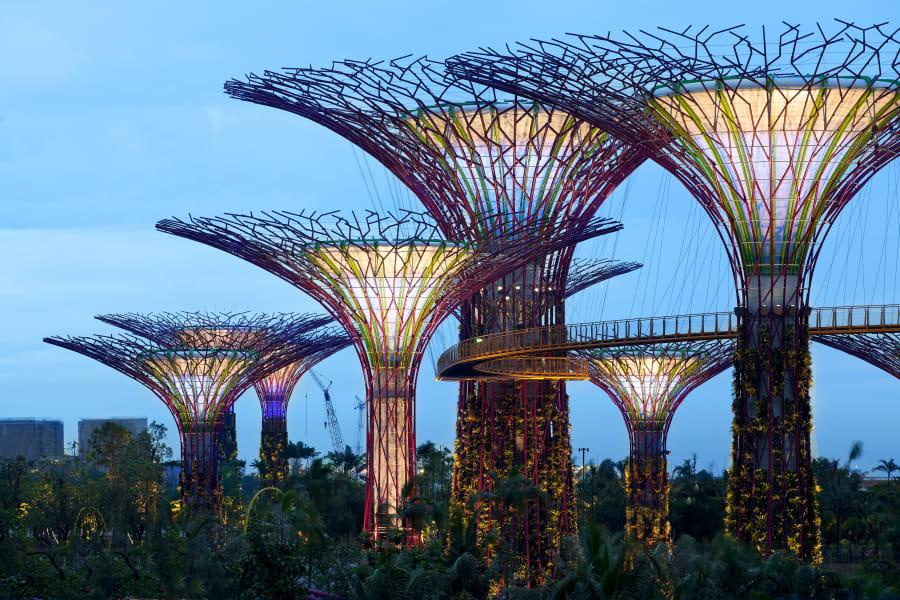 supertree singapore night
