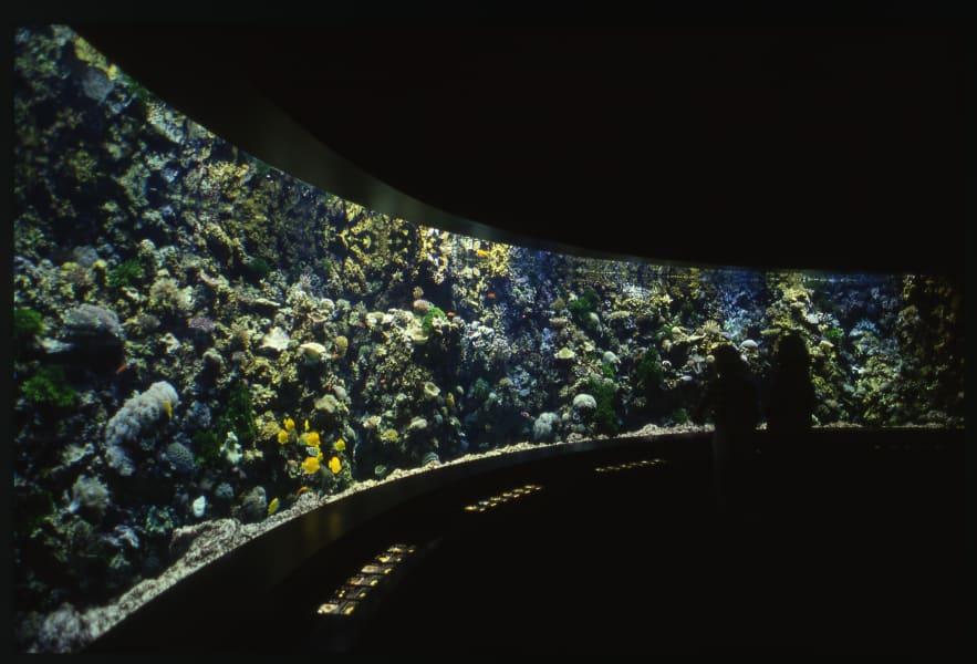 brest Océanopolis