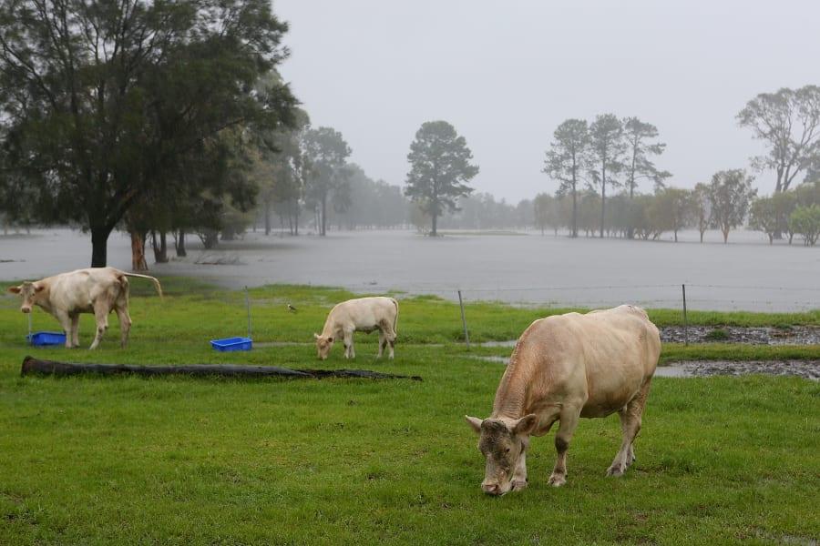 07 australia flood 0128