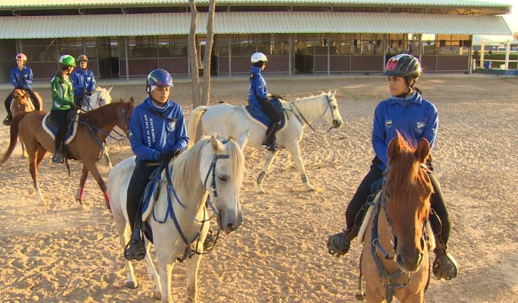 Endurancehorses5