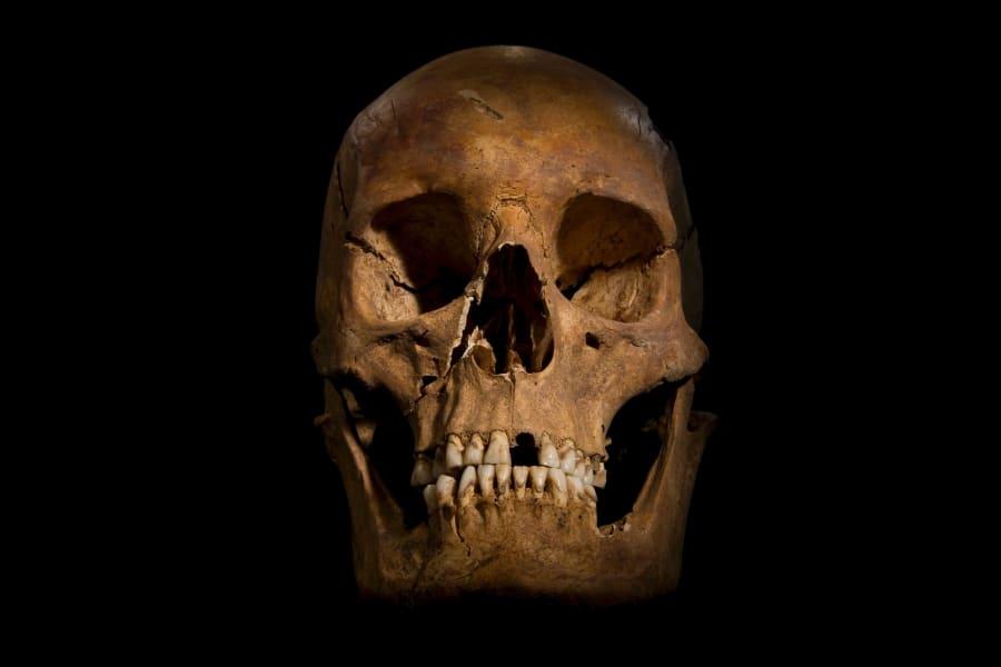 Richard III remains 16