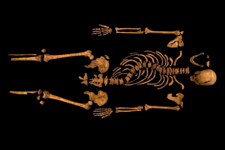 Richard III remains 19